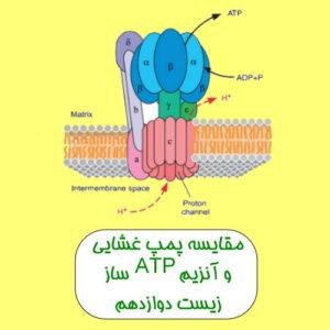 فیلم آموزشی پمپ غشایی و آنزیم ATP ساز