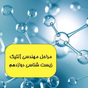 فیلم آموزشی مراحل ساختن DNA نوترکیب