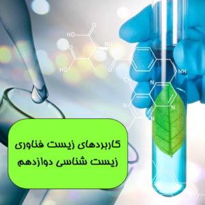 فیلم آموزشی مراحل ساخت انسولین